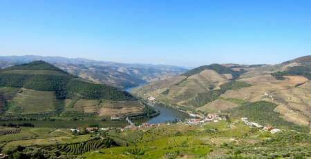 Small-Group Tour In Douro Valley With Boat Ride, Lunch And Wine Tastings