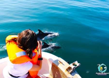 Desde Cabanas De Tavira: Tour En Bote De Avistamiento De Delfines De 2,5 Horas