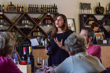 Douro Valley Tour Including 3 Wineries And Lunch