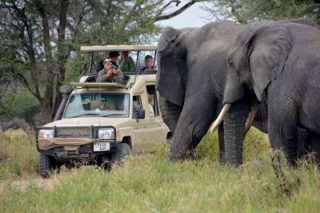 5-Day Luxury Lodge Safari In Tanzania