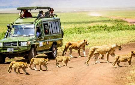 4-Day Camping Safari In National Parks Of Tanzania