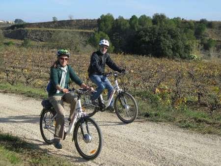 Bike Route And Wine Tasting In Traditional Vineyard Near Barcelona