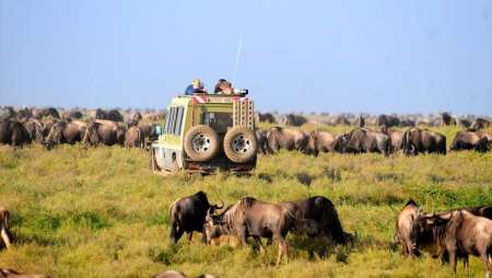 4-Day Safari In Tanzania With Camping In Serengeti, Manyara And Ngorongoro