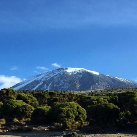 8-Day Trekking Trip To Climb The Kilimanjaro Through The Lemosho Route