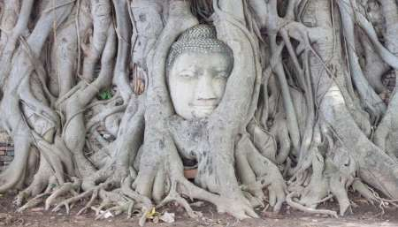 Full-Day Tour Of The Unesco Sites In Ayutthaya