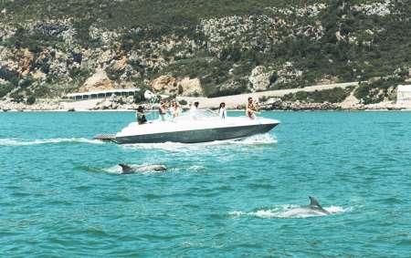 Setúbal: 3 Hours Boat Trip In Arrábida / Troia