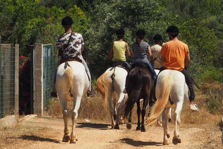 Silves: Private Horseback Riding Tour In Rural Algarve