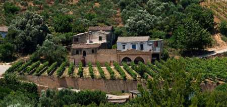 Chania: Jeep Safari Tour With Olive Oil & Wine Tasting
