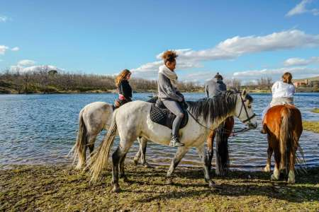 Madrid: Segovia City Tour And Horse Riding
