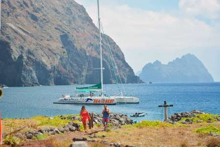 From Funchal: Catamaran Tour To The Desertas Islands Of Madeira Archipelago