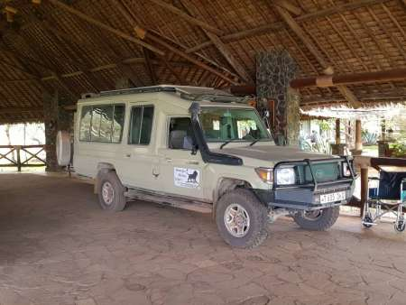 5 Day Living Among Lions: Safari Trip In Tanzania