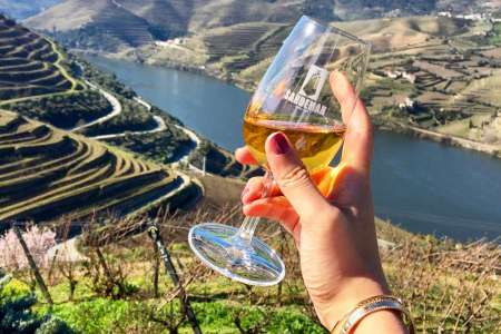 Douro Valley: Visit And Wine Tasting, Lunch And Boat Trip