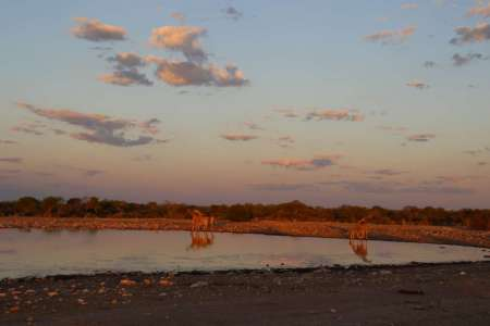 7-Day Camping Safari Trip In The Pride Of Namibia