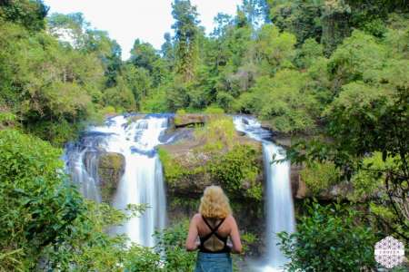 All About The Falls: Excursion To Cairns' Waterfalls And Rainforest