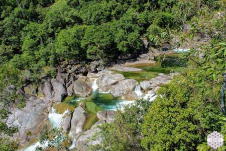 Around The Creek: Cairns' Rainforest Tour