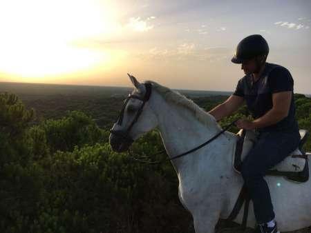 De Sevilha: Passeio A Cavalo De De 2 Horas