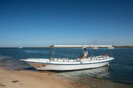 2H30 Ria Formosa Birdwatching Ecofriendly Boat Tour