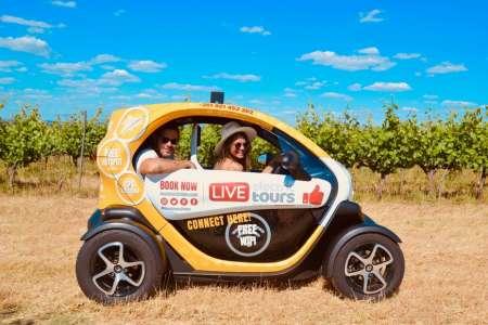 Évora: Electric Car Tour And Visit To Cartuxa Vineyard