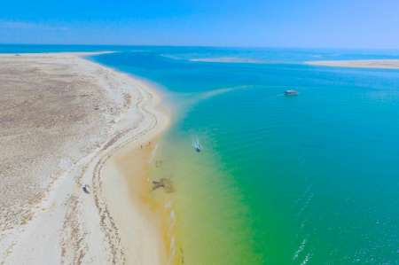 Demi-Journée À Ria Formosa En Bateau: Visitez Les Îles D'armona, Deserta, Culatra, Farol