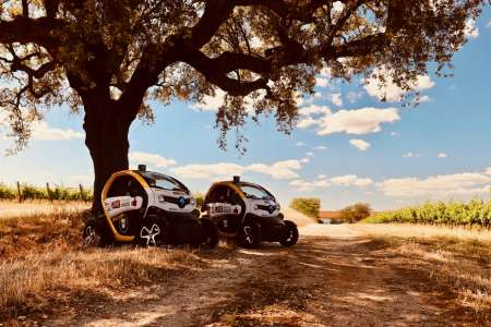 Évora: Electric Car Tour In The Megalithic Ruins With Gps Audio Guide