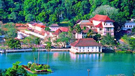Sri Lanka 4-Day Safari Trip: Visit Nuwara Eliya, Kandy And Yala National Park