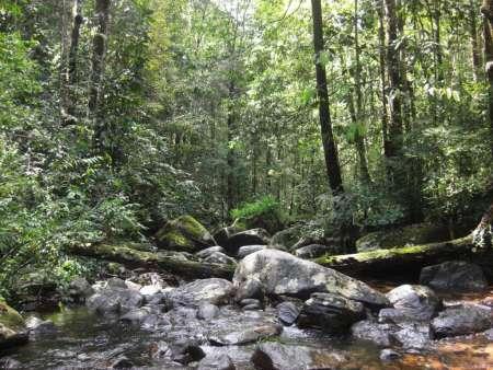 Viaje De 13 Días Para Una Experiencia De Safari De Vida Silvestre En Sri Lanka