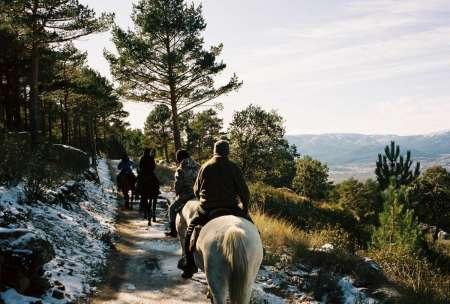 Paseo A Caballo En El Parque Natural De Madrid Con Picnic De Comida Española