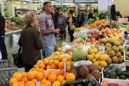 Algarve Flavours Tour In A Kombi