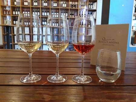 Visita Às Vinhas E Adega + Degustação De 3 Vinhos Na Quinta De Santa Cristina