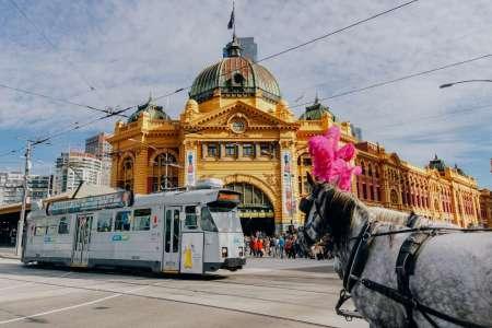 Melbourne City Tour Und Eintrittskarten Für Eureka Skydeck 88