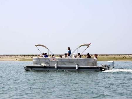 Von Faro: 3-Stündige Bootstour Nach Deserta Island Und Farol Island