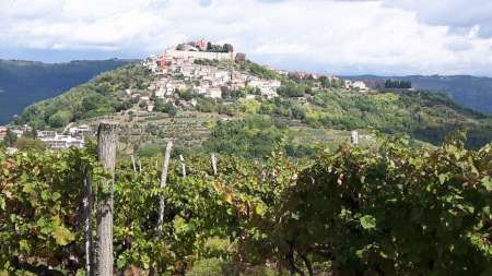 Istrian Tapestry: Gourmet Tour With Tastings Of Wines, Truffles And Olive Oil