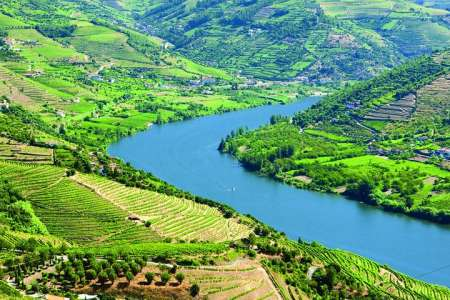 Douro Valley Excursion With Wine Tasting, Lunch & Cruise