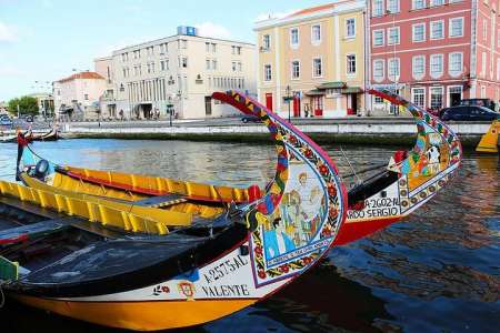 Aveiro & Coimbra Small-Group Full-Day Tour From Porto With Moliceiros Cruise