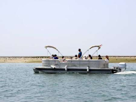 Faro: 2-Hour Boat Tour In Ria Formosa For Bird Watching