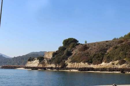 De Lisbonne: Excursion De 2 Heures En Bateau D'Observation Des Dauphins Dans La Baie De Sado
