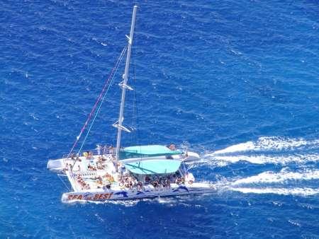 Madeira: Excursão De Jipe Ao Cabo Girão E Degustação De Vinhos + Tour De Observação De Golfinhos