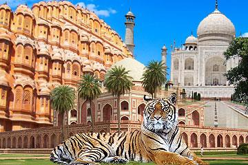 15-Day India Trip: Cultural Heritage And Tiger Tour