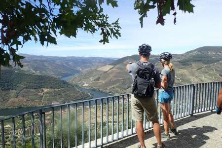 Biking Tour In The Vineyards Of Douro Valley With Picnic And Wine Tasting