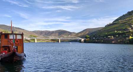 Douro Valley Half-Day Tour With Boat Ride And Wine Tasting