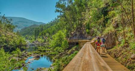 Paiva Walkways: Full-Day Private Tour With Lunch
