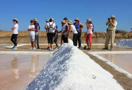 From Faro: Jeep Tour Through The Salt Ponds And The Dead Sea Of The Ria Formosa