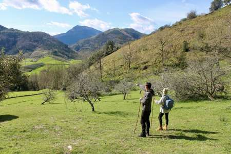 San Sebastián: Basque Rural Historical Walk And Ecological Cider House Visit