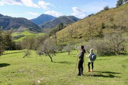 Saint-Sébastien: Promenade Historique Rurale Basque Et Visite D'Une Cidrerie