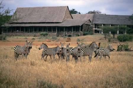 4-Day Safari Trip In Tsavo West And Amboseli National Park