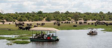 Botswana Safari Trip: Chobe National Park Day Trip With Cruise And Lunch