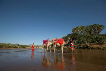 4-Day Safari Trip To Samburu And Aberdares National Park Starting From Nairobi