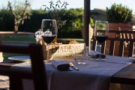 Chianti Region: Abendessen Für Weinliebhaber Im Diadema Wine Cellar