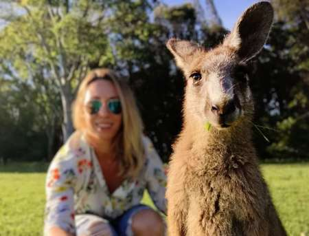 Sydney Secrets Private Tour: Wilderness, Wildlife, Waves, Waterfalls And Wine