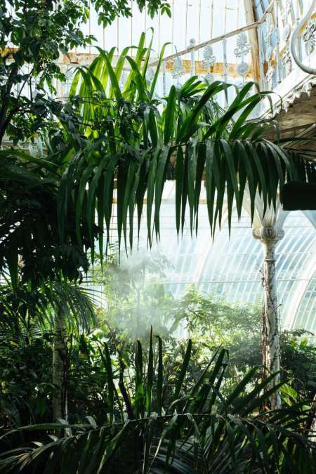 London: Visit Kew Gardens With An Audioguided Walking Tour